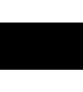 Amsterdam Water Logo
